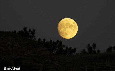 """"""" Versos na lúa"""" de Antonio Lois – devellabella"""